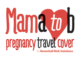 Mama to b pregnancy travel cover